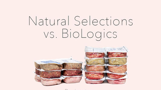 Which is the Best Food for My Dog: Natural Selections or BioLogics?
