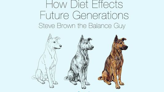 Your Pets Health Potential