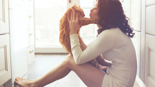 7 Fitness Tips to Keep your Cat in Shape
