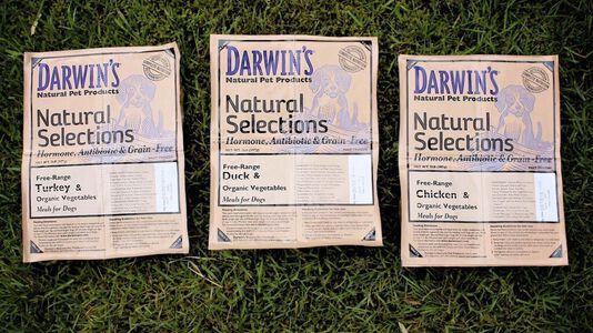 Darwin's New Raw Dog Food Formula