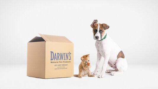 Darwin's Adoption Program