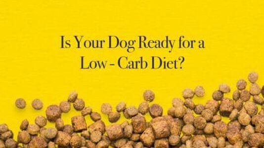 Low-Carb Dog Food