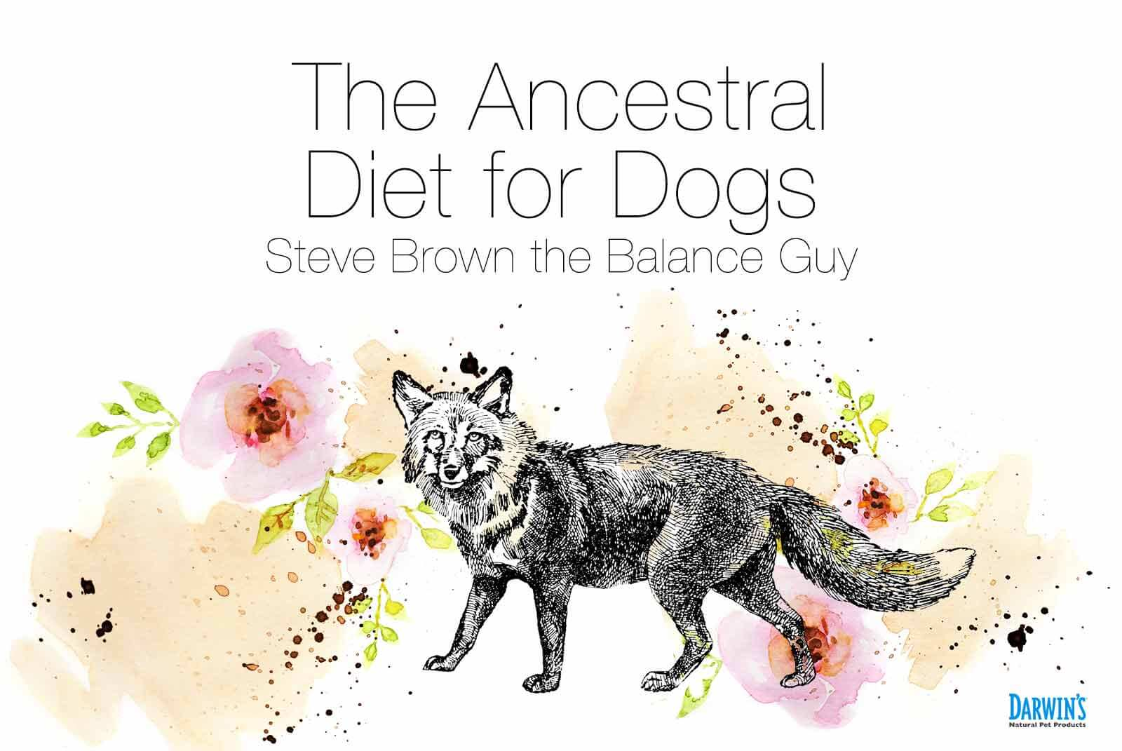 The Ancestral Diet for Dogs
