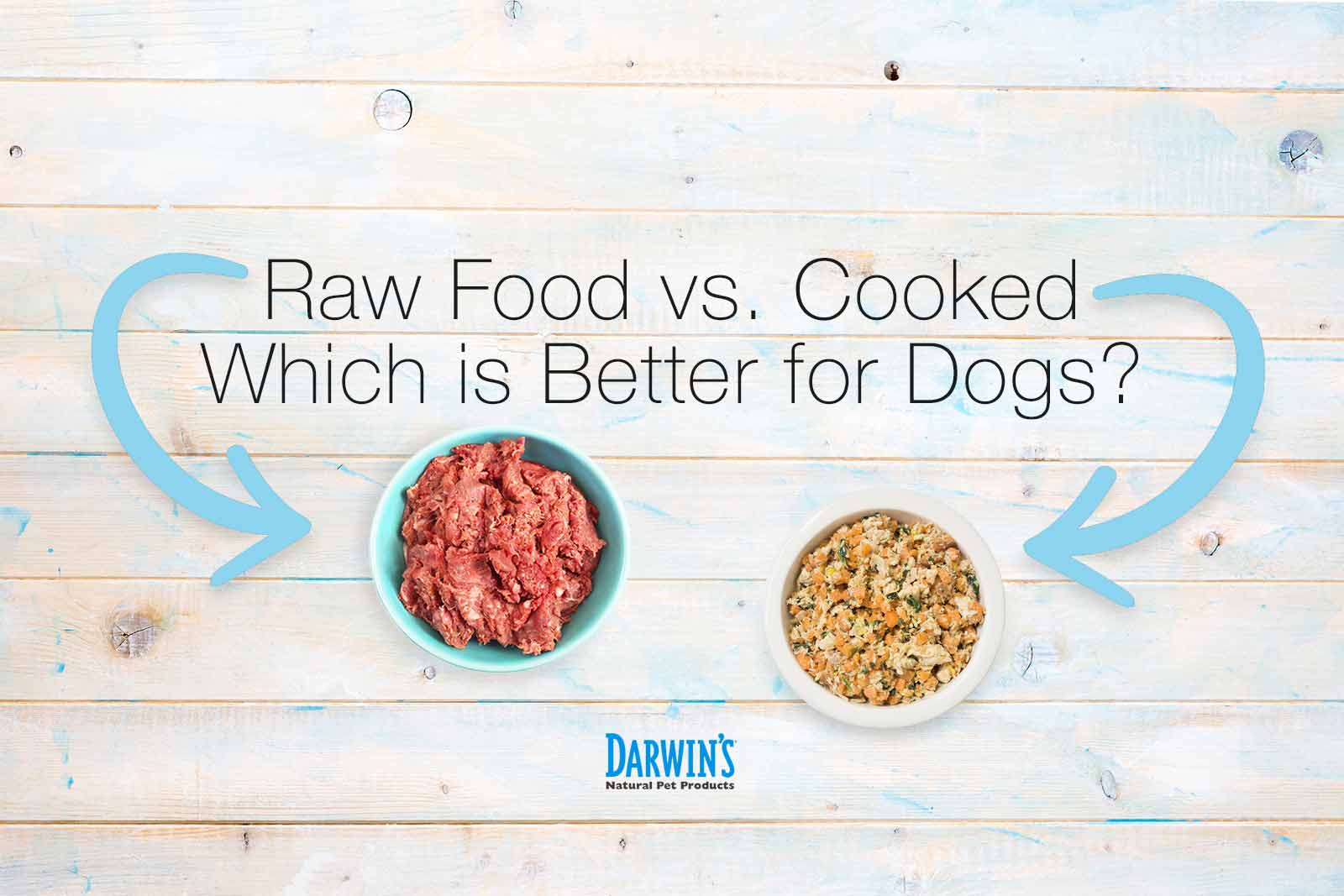 Raw Food vs. Cooked – Which Is Better For Dogs?