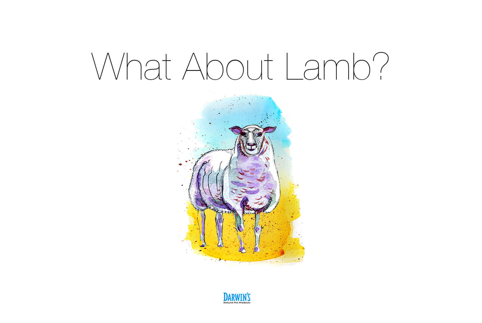 What About Lamb? – Ask Darwin's