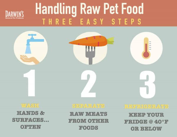 3 Easy Tips on Handling Raw Pet Food
