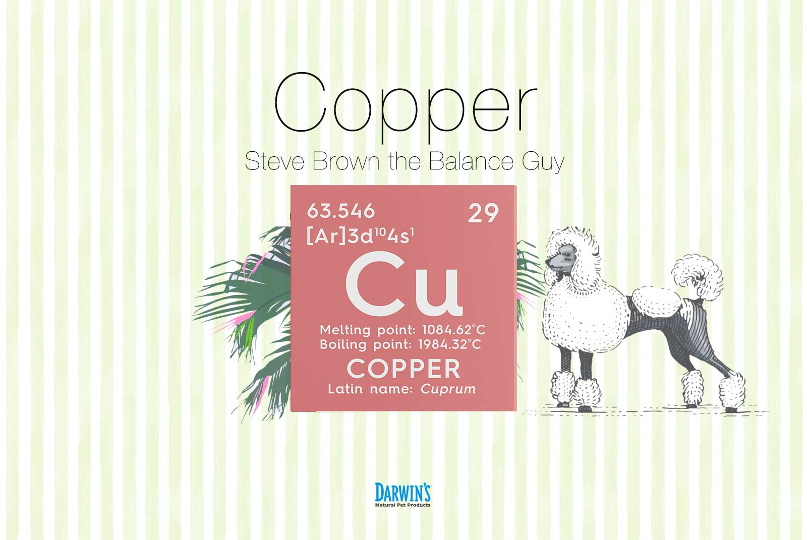 Focus on Nutrients Part:2 Copper (Cu)