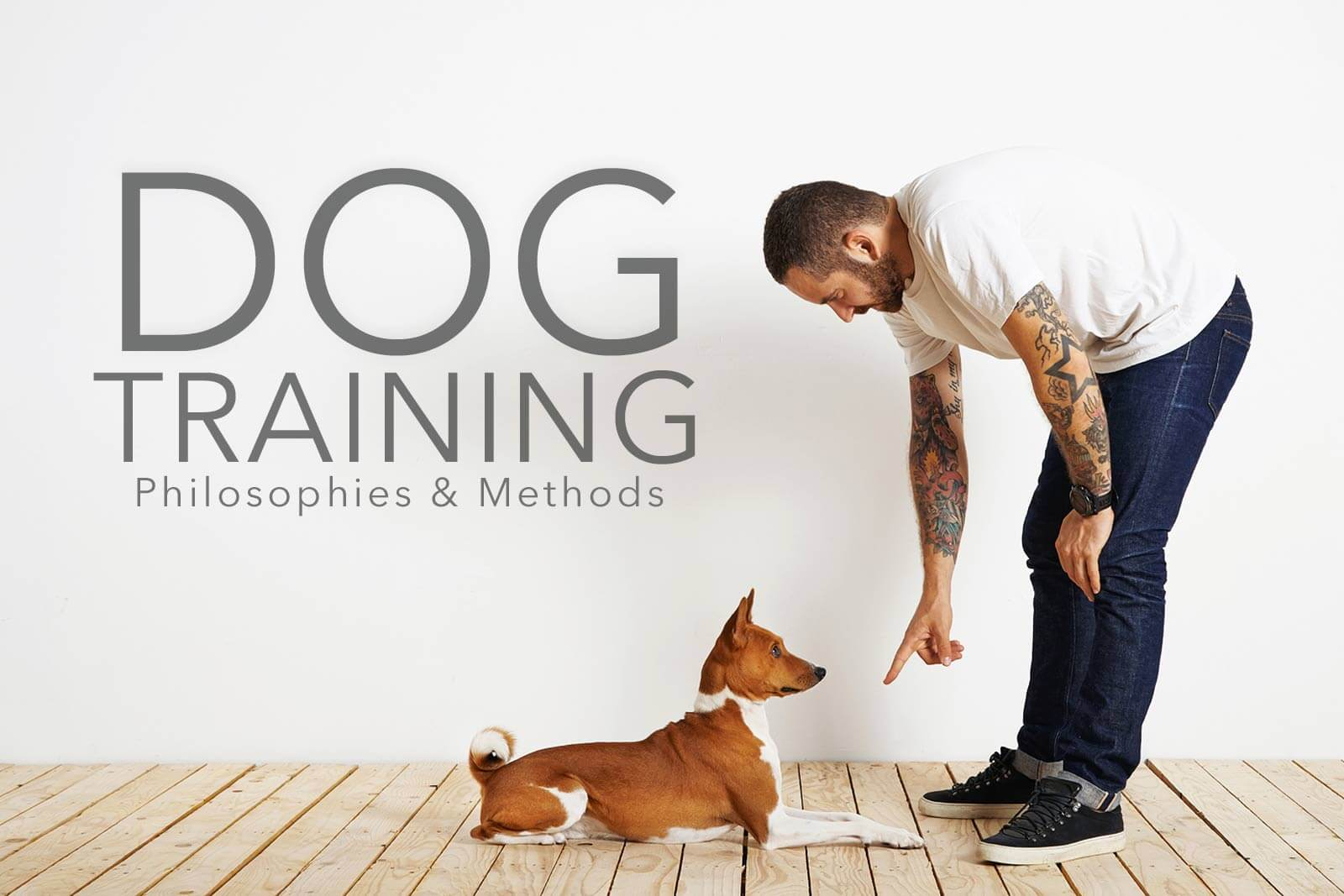 Dog Training Philosophies and Methods