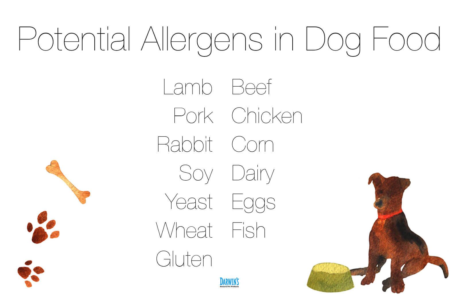 dog-food-allergies