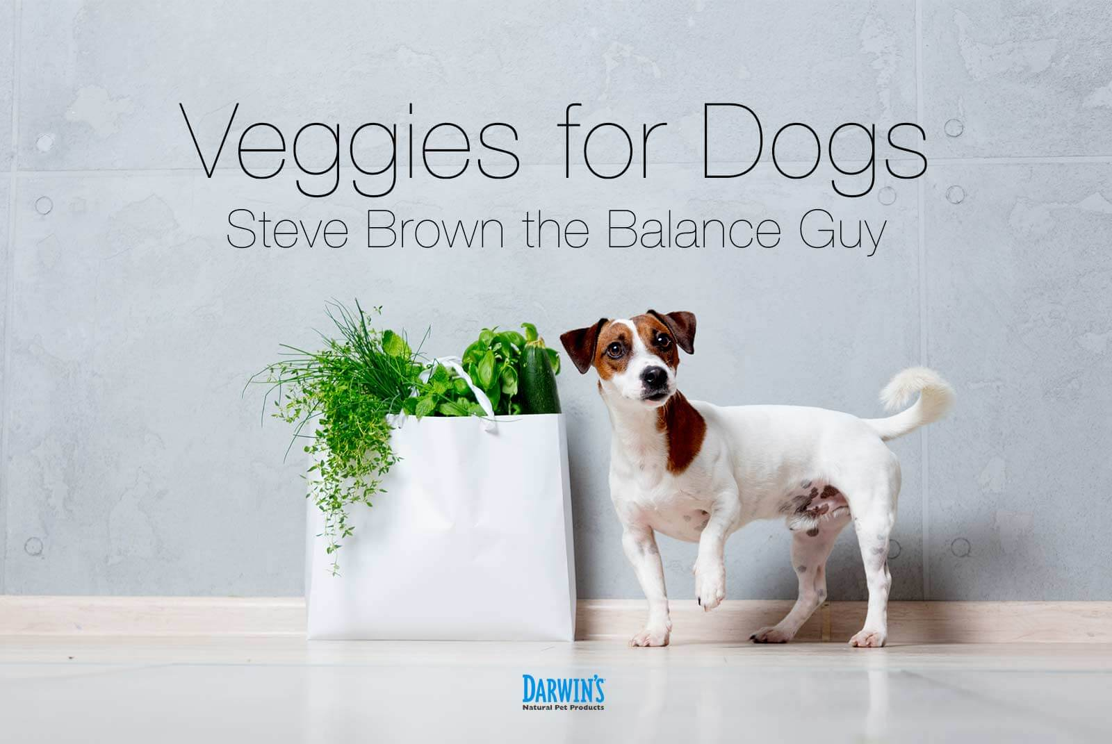 Yes; Vegetables for Dogs!