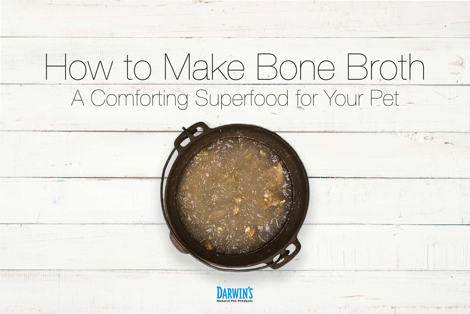 Bone Broth For Pets: Why & How