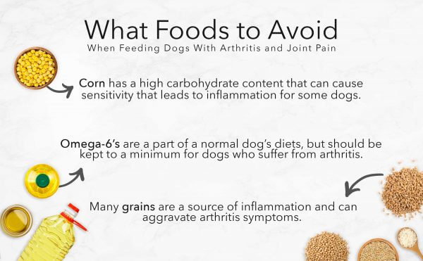 Foods To Aviod for Arthritic Dogs