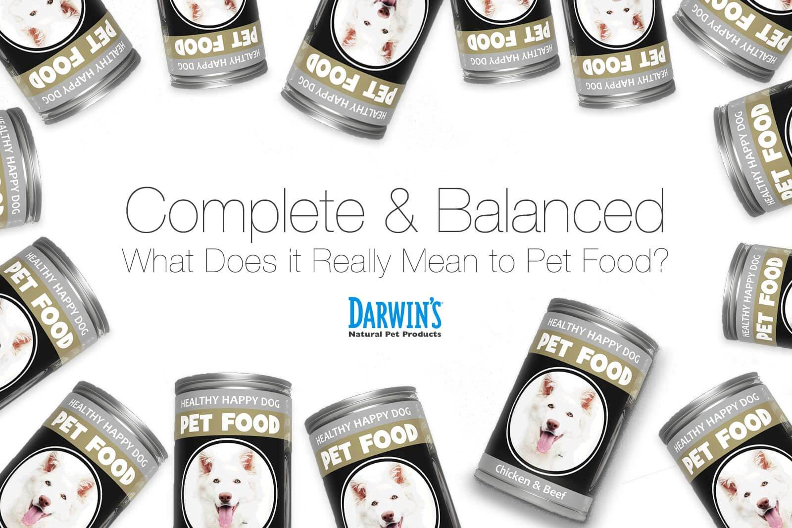 Complete and Balanced Dog Diets