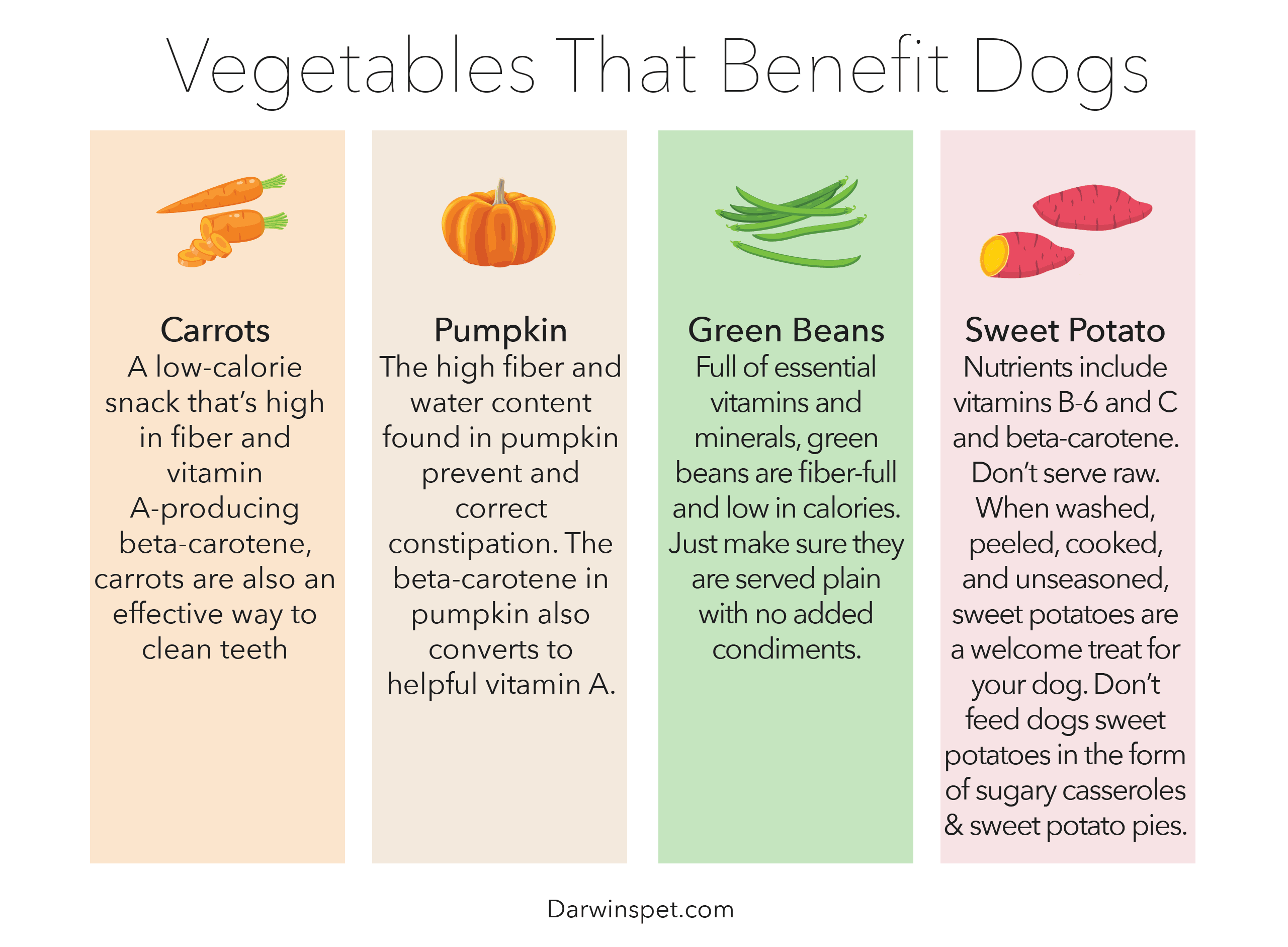 veggies-for-dogs