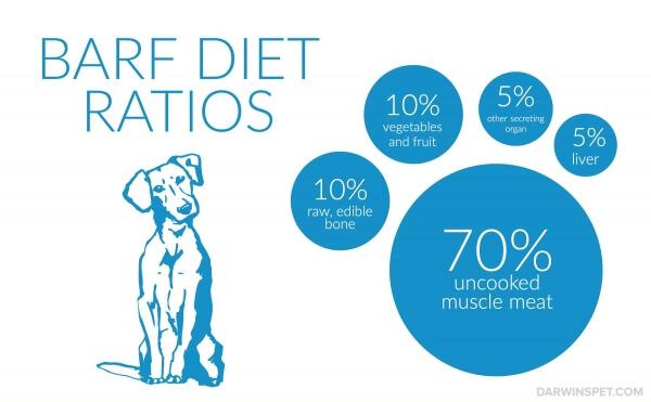 BARF-diet-ratios-for-feeding