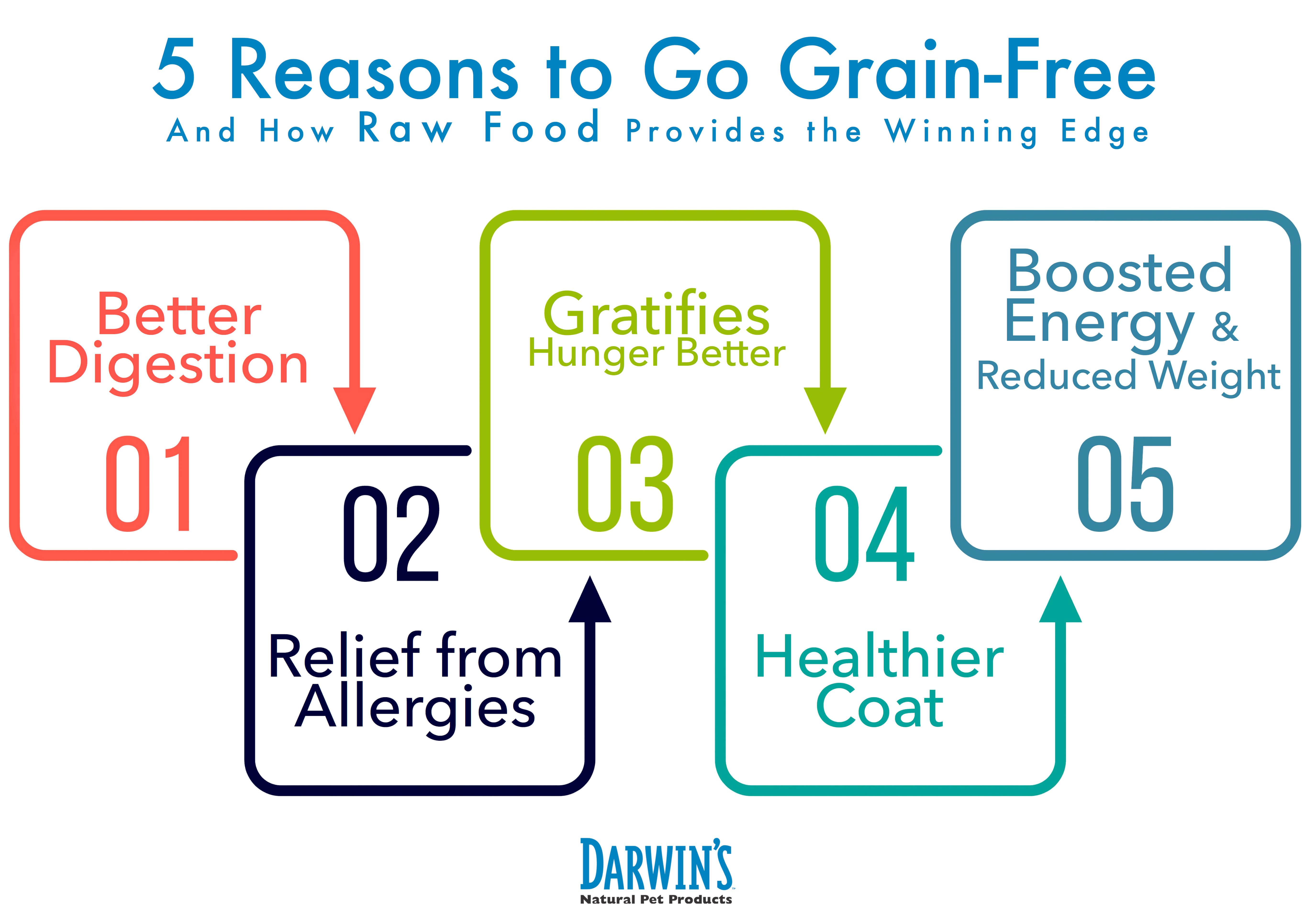 Grain Free Dog Food Benifits