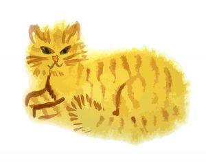 Cat Food Immune System