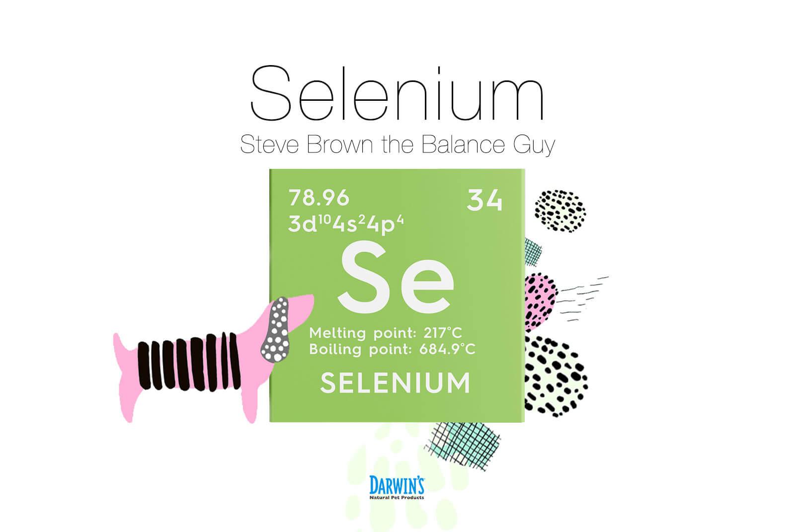 Focus on Nutrients Part 2: Selenium